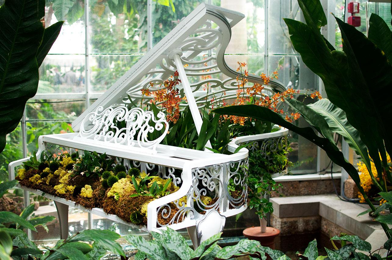 DC Botanical Garden 2