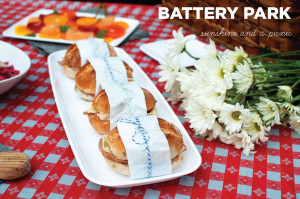 Picnic Series: Battery Park City