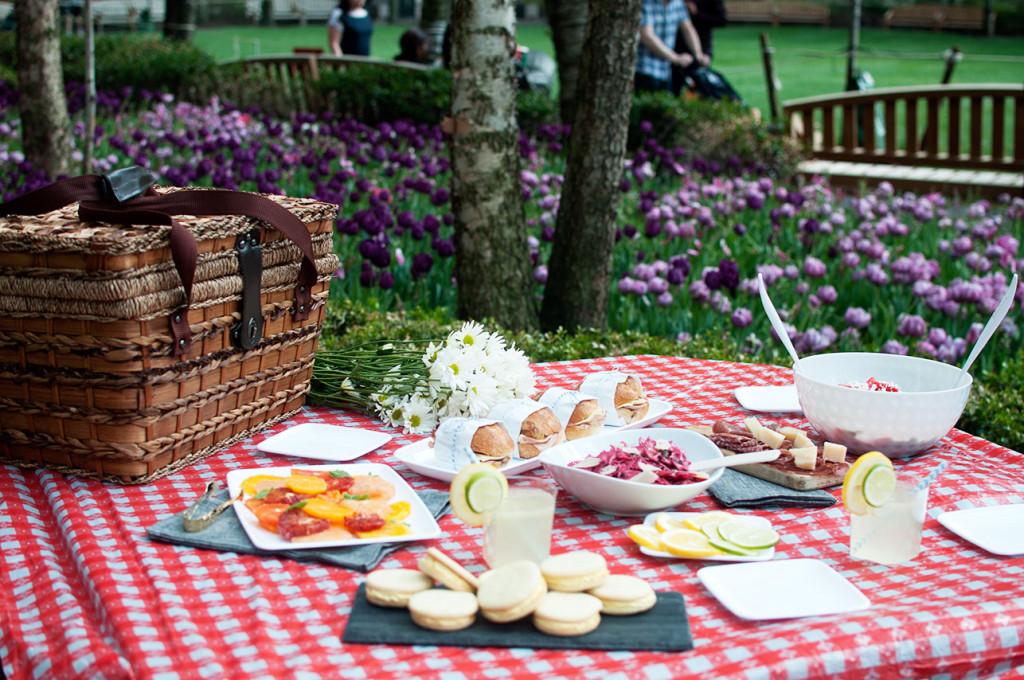 Batterypark-picnic-1