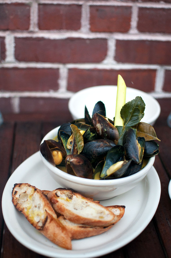 Nelson-Blue-Mussels-1