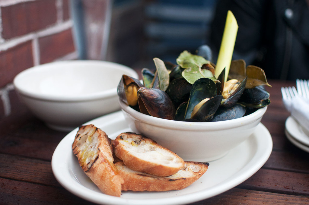 Nelson-Blue-Mussels