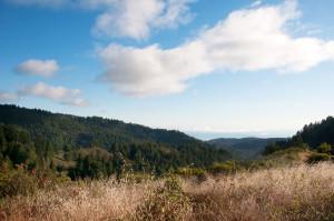 San Francisco: Hiking