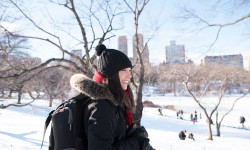 Winter Storm Jonas + Photography